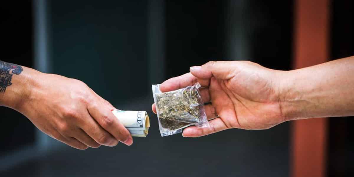 Mercato Nero Cannabis