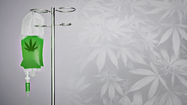 Cannabis contro cancro